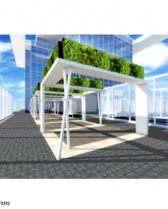ELEVATED PLANTERS copy